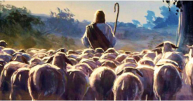 4th Sunday of Easter - May 3rd, 2020