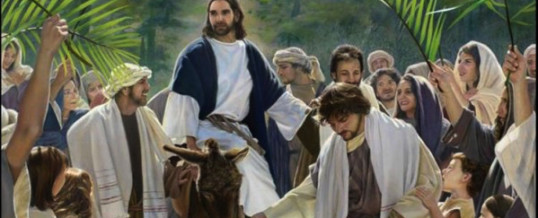 Homily – April 5th – Palm Sunday