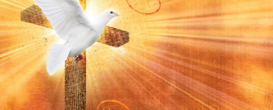 Reflection – Come Holy Spirit…