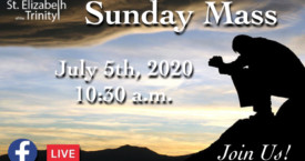 14th Sunday in OT - July 5th, 2020