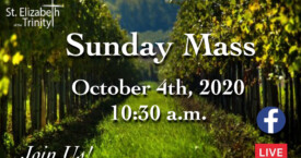 27th Sunday in OT - Oct 4th, 2020
